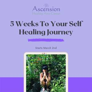 Learn How To Heal Yourself Training Metro Detroit Michigan
